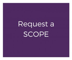 request a scope